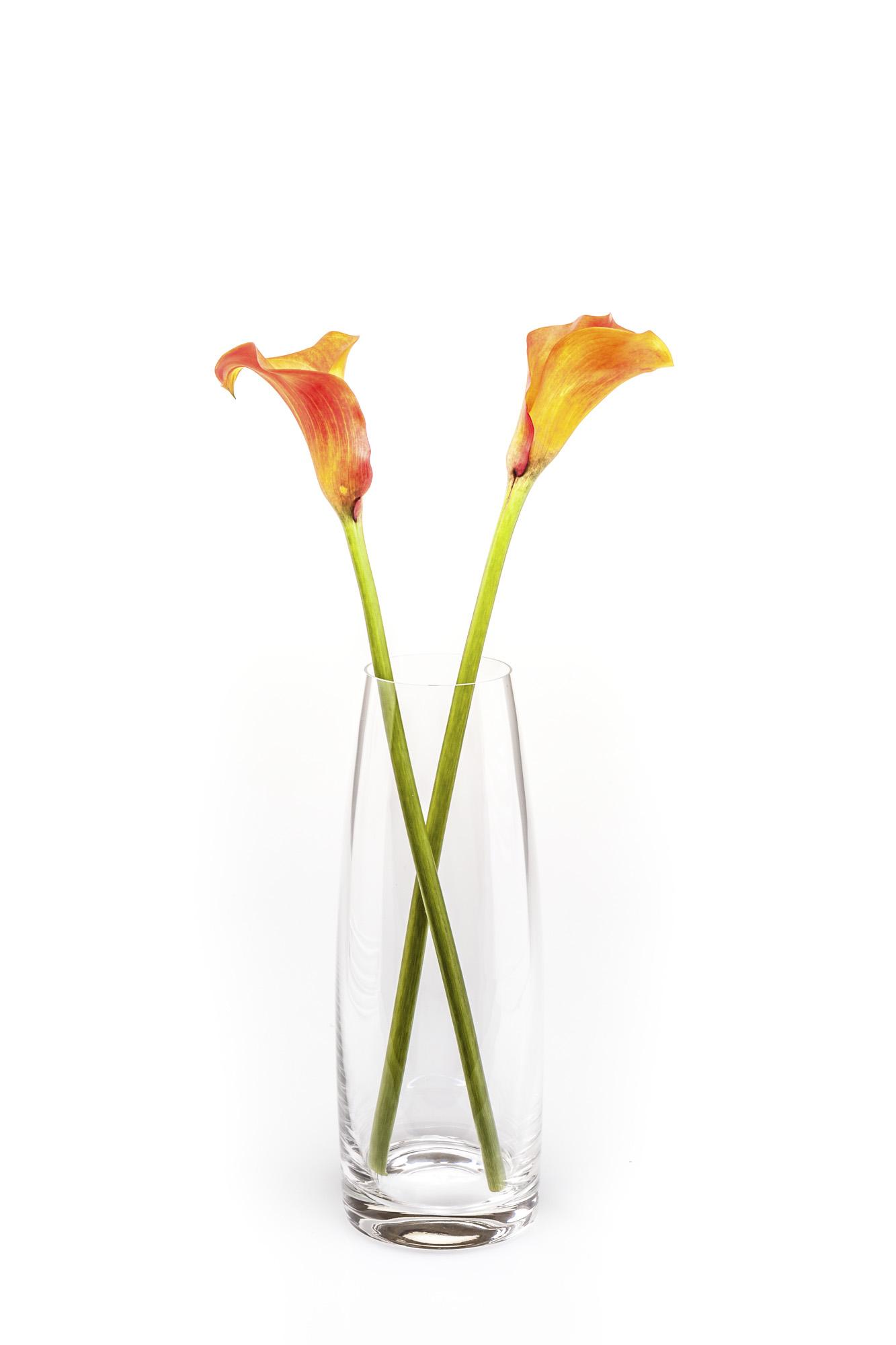 Crystal Galleries Vase 2